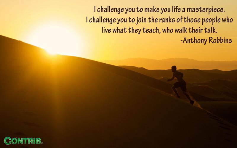 Contrib Challenges